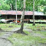 Pulau Kiluan / lodge in Kiluan island