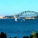 Our view from a Sydney Harbour cruise, Rose Bay