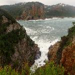 Knysna Featherbed Reserve