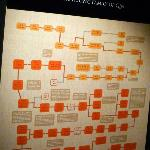Qin Dynasty family tree information