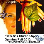 Spa to open Dec 2012