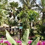 parkähnlicher Garten mit Pool