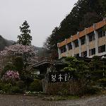桜がとてもきれいでした