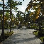 Beautiful Peaceful Walk To Lobby!
