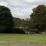 Bernheim Landscape