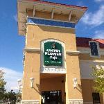 Cactus Flower Cafe Gulf Shores