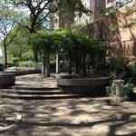 Peter Detmold Park 1