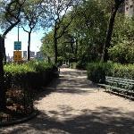 Peter Detmold Park 6