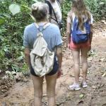 Dennis guiding us through the Rainforest