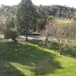 Grounds from verandah