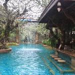 Canali e piscine
