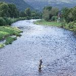 The River Conwy is great for anglers