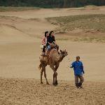 ラクダに乗る人たち
