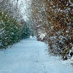 Inverno nei dintorni del Sole del Borgo, il fontanile