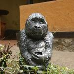 this `mascot`hand carved Mountain gorilla greets guests at the vehicle park