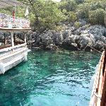 One of the Blue Bays (Holiday Mate)