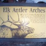 Elk Antler Arch information