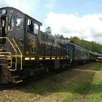 OC&T Train