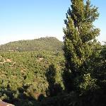 photo taken from terrace