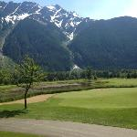 Manicured Golf Greens