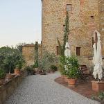 The terrace/garden