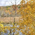 Butler lake