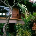 Photo of Chaem Muang House