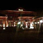 Pagoda in the dark