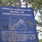 Honolua Conservation District, just down the street from hotel