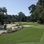 Reflects the overall flavor of the May River Golf Club