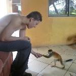 Dame la mano Mono