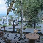 the lovely little terrace