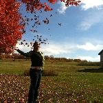 Beautiful Scenery on the Wine/Fall Color Tour