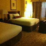 Deluxe Room at the Monte Carlo