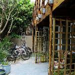 Outdoor Patio Bike Rentals