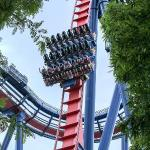 The main 90 degree drop on Sheikra