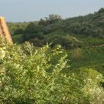 Another view of the surrounding vineyards