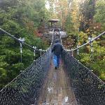 On the swinging bridge