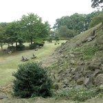 Ishigakiyama Castle