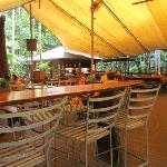 Beach House Restaurant-underneath the canopy