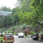 Park opp hotel entrance