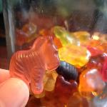 gummy bears given out after each meal