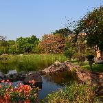 jardins de l hôtel