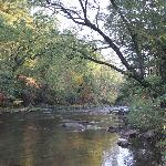 Catawissa Creek