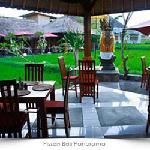 view at pissari bali cafe