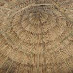 Beautiful thatched roof inside