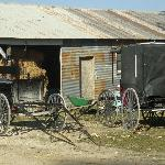 Amish buggy and wagon