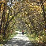 Root River Trail