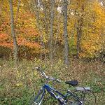 Fall colors along the trail