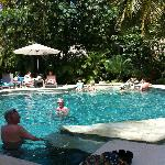 Adult pool with our cocktails from the swim up bar